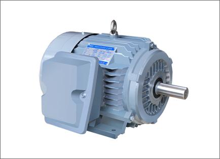 NE系列高效高转矩三相异步电动机